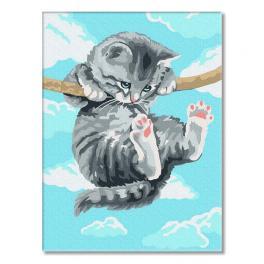 PC3040021 Malování podle čísel - Kotě na větvi