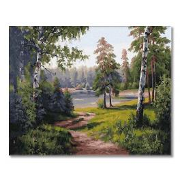 PC4050658 Malování podle čísel - Lesní cesta