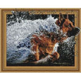 5PD4050043 Diamond painting sada - Radost psa
