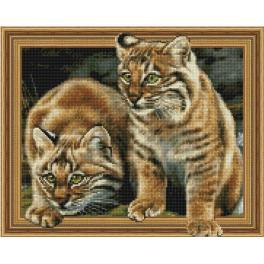 5PD4050039 Diamond painting sada - Rys