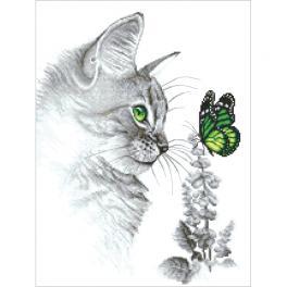 AN 10300 Předtištěná aida - Kocourek a motýlek