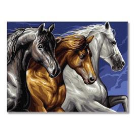 PC3040038 Malování podle čísel - Trojice koní
