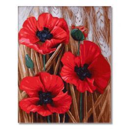 PC4050463 Malování podle čísel - Rudé máky