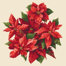 K 10673 Předtištěná kanava - Vánoční hvězda II