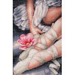LPN-0188131 Diamond painting sada - Moje baletní botičky
