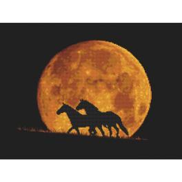 Z 10323 Vyšívací sada - Koně v záři měsíce