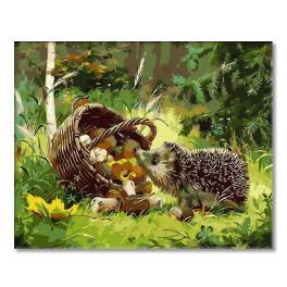 PC4050343 Malování podle čísel - Lesní ježek