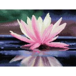 DQ8008 Diamond painting sada - Odraz květu