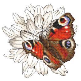 W 10330 Vzor na vyšívání v PDF - Motýl a květ jiřinky