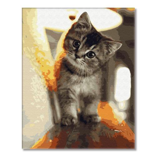 GX29845 Malování podle čísel - Malé kotě