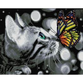 PD4050177 Diamond painting sada - Motýl a kotě