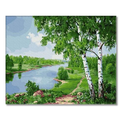 PC4050655 Malování podle čísel - Břízy nad řekou