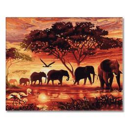 PC4050802 Malování podle čísel - Duch Afriky